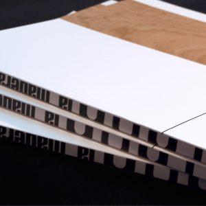 Diseño y maquetación sobre el castaño, madera de asturias y su uso