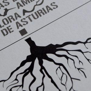 Diseño y maquetación de la Guía didáctica sobre las especias amenazadas de flora de asturias