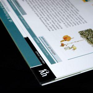 Diseño de la Guía de campo Las especies amenazadas de la flora de Asturias