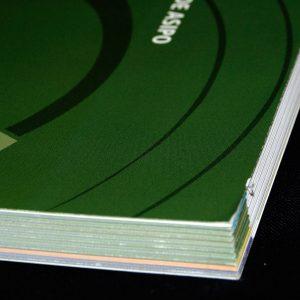 Diseño y maquetación de la guía de buenas prácticas medioambientales, editada por Asipo