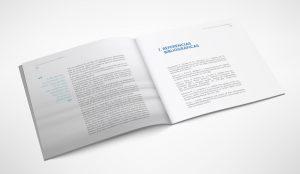 Ilustración, diseño y maquetación de informe CIBERAACC