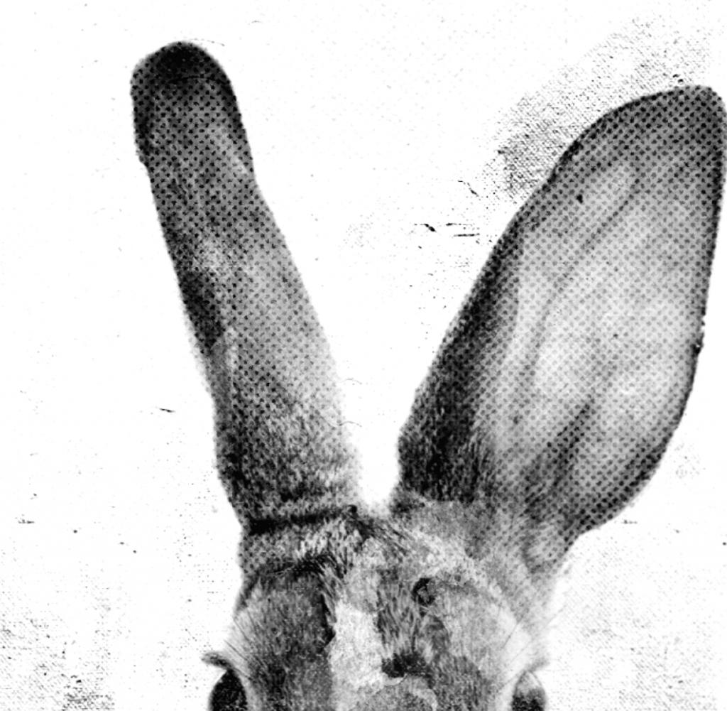Ilustración, diseño y maquetación de cartel de apertura de galerías de arte de asturias