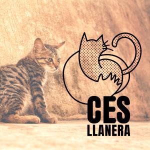 Diseño de logotipo para CES Llanera